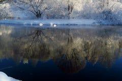La neige et le gel Photographie stock libre de droits