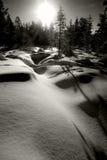 La neige et les arbres en hiver aménagent en parc en cercle arctique Photo stock