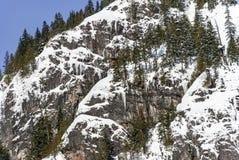 La neige et les glaçons d'hiver sur des falaises de montagne dans la poudre ont couvert la forêt sur ensoleillé Images libres de droits