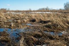 La neige fond et l'eau accumulée de fonte forme un marais photographie stock
