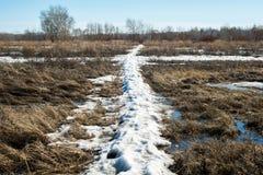 La neige fond et l'eau accumulée de fonte forme un marais images stock