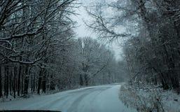 La neige incurvée a couvert la route par des arbres photos libres de droits