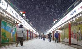 La neige la plus lourde en quelques décennies à Tokyo Photographie stock libre de droits