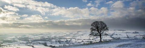 La neige panoramique de paysage d'hiver renversant a couvert l'esprit de campagne Image stock