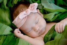 la neonata sta dormendo sulla coperta verde del tessuto fotografia stock libera da diritti