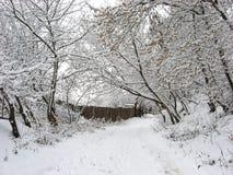 La neve è caduto alla notte immagini stock