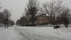 La neve accatasta su vicino alla città universitaria Immagine Stock Libera da Diritti