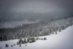 La neve cade nelle montagne Immagini Stock