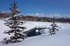 La neve del paese delle meraviglie dell'inverno ha ghiacciato il lago immagini stock