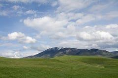 La neve dell'Utah ha ricoperto le montagne con il rotolamento delle colline verdi fotografia stock