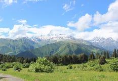 La neve della neve delle montagne ha ricoperto la foresta superiore del freddo di freschezza di bellezza della natura di libertà Fotografia Stock