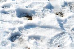 La neve di fusione con l'essere umano calza le orme Fotografie Stock Libere da Diritti