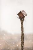 Precipitazioni nevose fresche Immagini Stock Libere da Diritti
