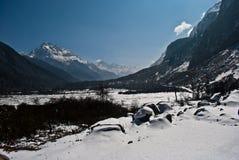 La neve ha completato le montagne in valle di Yumthang Immagini Stock Libere da Diritti
