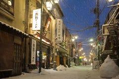 La neve più pesante nelle decadi a Tokyo Fotografie Stock Libere da Diritti