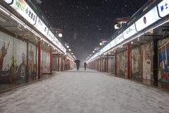 La neve più pesante nelle decadi a Tokyo Immagini Stock