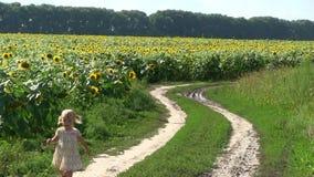 La niña corre a lo largo de una carretera nacional a través de un campo con un girasol metrajes