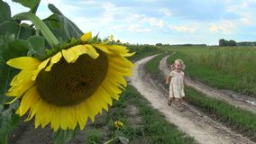 La niña corre a lo largo de una carretera nacional a través de un campo con un girasol almacen de metraje de vídeo