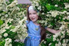 La niña despreocupada se está colocando en el arbusto de una cereza de pájaro Imagen de archivo libre de regalías