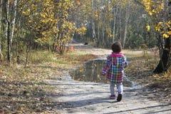 La niña en bosque del otoño está en el camino cerca del charco Imagenes de archivo