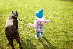 La niña está caminando en el parque con su perro grande fotografía de archivo