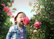 La niña huele una flor de una rosa Foto de archivo