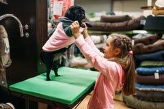 La niña intenta encendido la ropa para el perrito en la tienda de animales Fotos de archivo libres de regalías