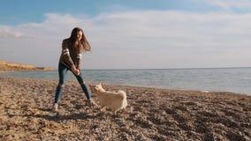 La niña juega con el palillo con su animal doméstico blanco asombroso del inu del shiba cerca de la cámara lenta del mar almacen de video