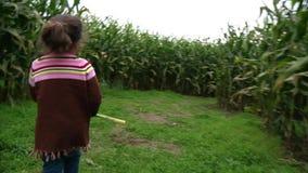 La niña linda camina en un laberinto del maíz metrajes