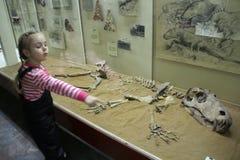 La niña muestra el esqueleto de un animal antiguo Foto de archivo libre de regalías