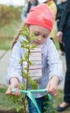La niña planta el árbol Imagenes de archivo