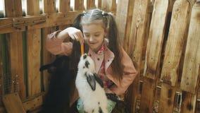 La niña que alimenta feliz zanahorias a los conejos en el zoo-granja almacen de video