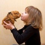La niña que besa el conejillo de Indias. Imágenes de archivo libres de regalías
