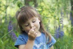 La niña que juega en lupine floreciente soleado de la cosecha del niño del niño del bosque florece juego de los niños al aire lib Foto de archivo