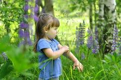 La niña que juega en lupine floreciente soleado de la cosecha del niño del niño del bosque florece juego de los niños al aire lib Fotografía de archivo