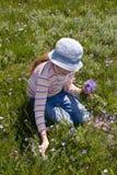 La niña recoge las flores Fotos de archivo