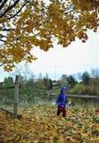 La niña sonriente en follaje del amarillo del otoño de un arce Imagenes de archivo