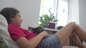 La niña y el gatito mullido blanco y negro mienten en la cama muchacha que frota ligeramente un pequeño vídeo de la cámara lenta  metrajes