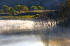 La niebla Imágenes de archivo libres de regalías