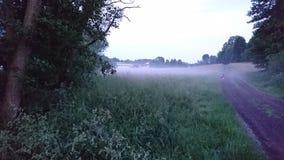 La niebla Fotografía de archivo libre de regalías