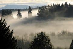 La niebla cae sobre la montaña Imagen de archivo libre de regalías