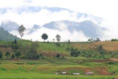 La niebla de la mañana es alta a lo largo de las colinas Imagen de archivo