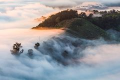 La niebla de la mañana en la montaña fotografía de archivo