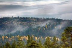 La niebla de la mañana se arrastra con los pedazos sobre bosque de la montaña del otoño Imagen de archivo libre de regalías