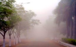 La niebla inusual fotos de archivo