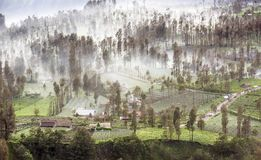 La niebla que fluía sobre el pueblo de Cemoro Lawang en la mañana localizó al noreste de Mt Bromo, Indonesia foto de archivo libre de regalías