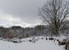 La nieve blanca del invierno cubrió el paisaje entero imagen de archivo