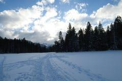 La nieve blanca en el prado solo Fotografía de archivo libre de regalías