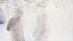 La nieve cae de la rama Un par cubre su cabeza con una capilla Cámara lenta metrajes