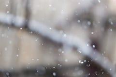 La nieve cae en la naturaleza Fotos de archivo